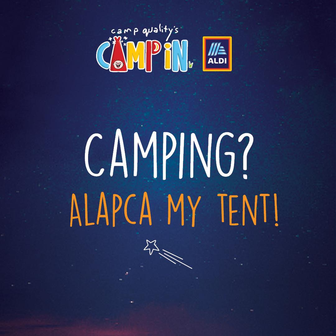 Facebook Instagram Post - Camping Pun 5