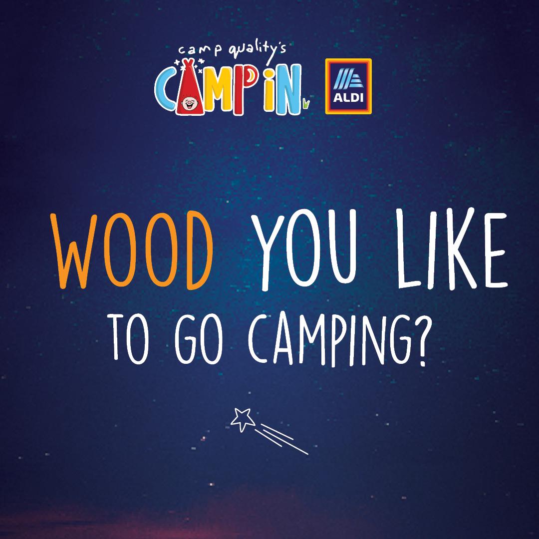Facebook Instagram Post - Camping Pun 2